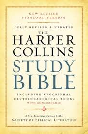 my top 3 study Bibles (and so should you)